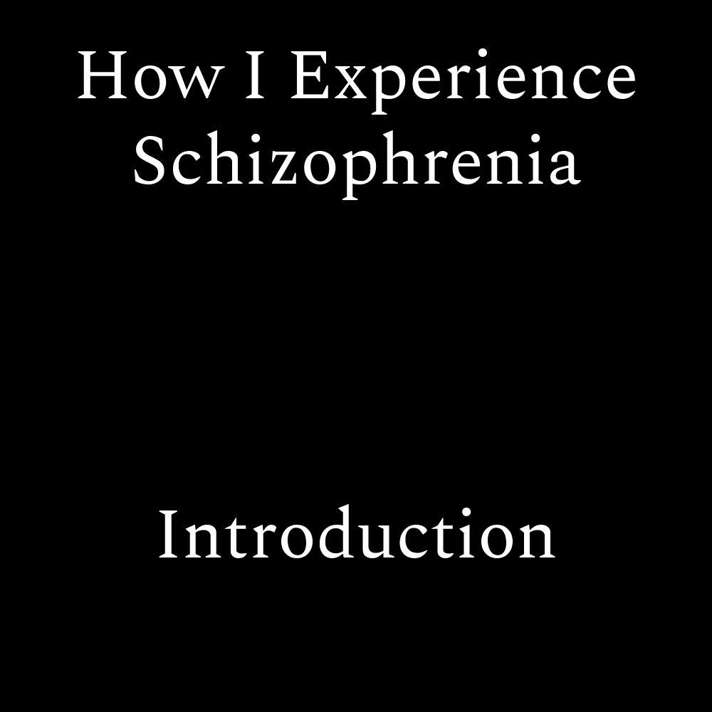 How i experience schizophrenia introduction